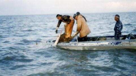 Чудовище Каспийского моря
