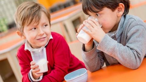 Молоко направят в школы