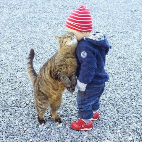 Неопровержимые доказательства того, что детям нужны домашние животные