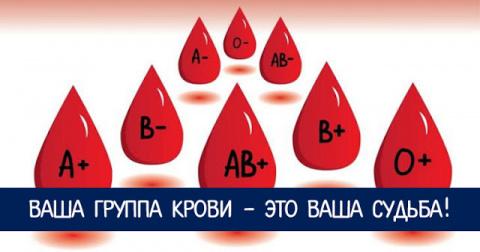 Ваша группа крови - это ваша судьба