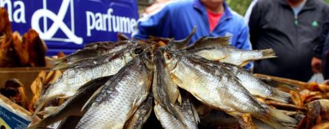 Новости Украины: массовое отравление рыбой во Львове