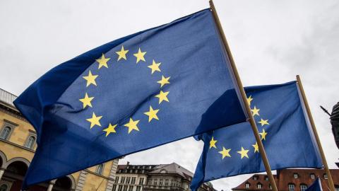 Лекарство от глупости: в ЕС …
