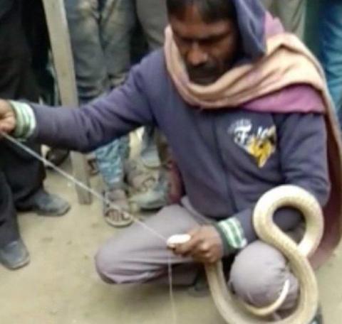 Индиец решил зашить пасть ко…