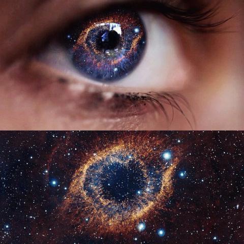 Вселенная смотрит на себя гл…