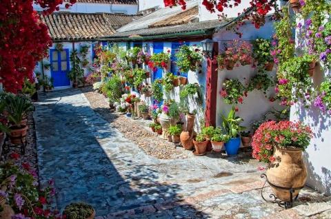 """Фестиваль цветов """"Лос-Патиос де Кордоба"""" в Испании"""