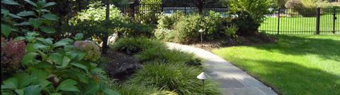 Озеленение дачного участка с песчаной или каменистой почвой