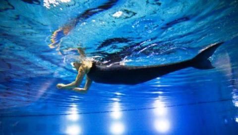 Где живёт женщина, которая плавает с искусственным русалочьим хвостом?