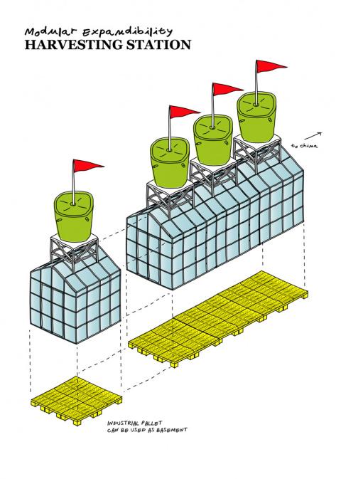 Ударим растениеводством по загрязнению мегаполисов