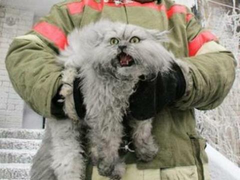 Пожарные будни