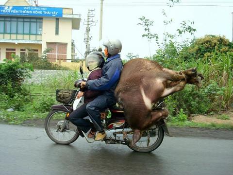 Вьетнам: нюансы правил дорожного движения