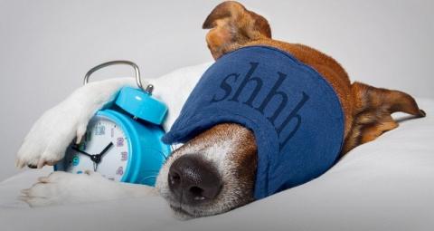 Во сколько нужно ложиться сп…