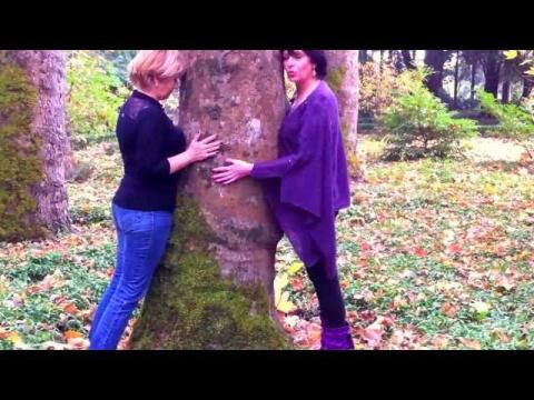 Деревья дающие и забирающие энергию