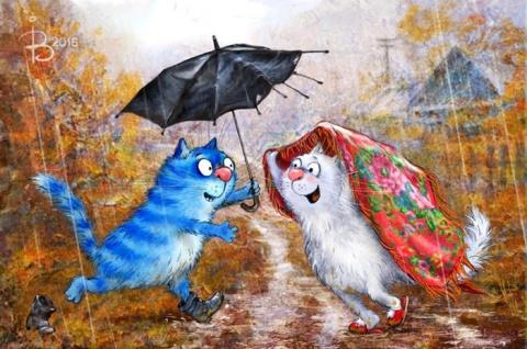 Позитивные коты которые поднимают настроение