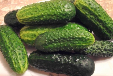 Теплая перина для раннего урожая: готовим участок под овощные культуры