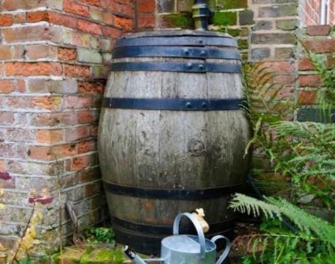 Система сбора и фильтрации дождевой воды в бочках. Как это было 100 лет назад