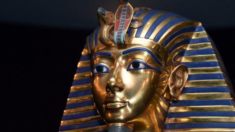 Египетские фараоны оказались…
