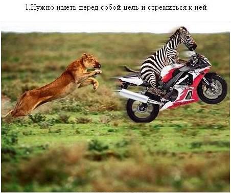 http://mtdata.ru/u17/photo6520/20040721092-0/big.jpeg