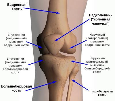 Боли в коленях: лечение наро…