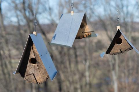 В преддверии зимы заботимся о птицах