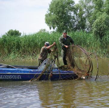Вентерь рыболовный своими руками фото