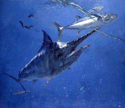 Мечта рыболова — Черный Марлин
