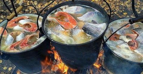 7 секретов правильной ухи. Приготовь легендарное блюдо так, чтобы все ахнули!
