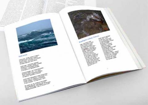 Характеристики 1-го номера журнала НОВОЕ СЛОВО 21 век
