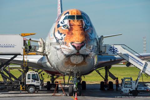 Boeing-747 в тигриной ливрее