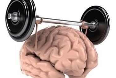 Тренировка мозга - это интересно и полезно!