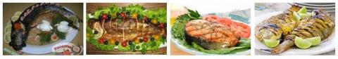 №710. Рыбная кулинария