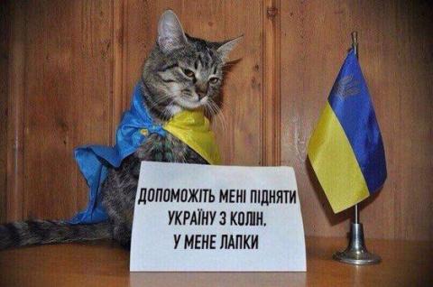 """Европа поражена рвущимися """"батрачить"""" миллионами украинцев"""