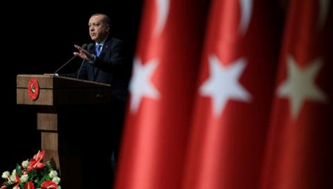 «Оливковая ветвь» Турции вА…