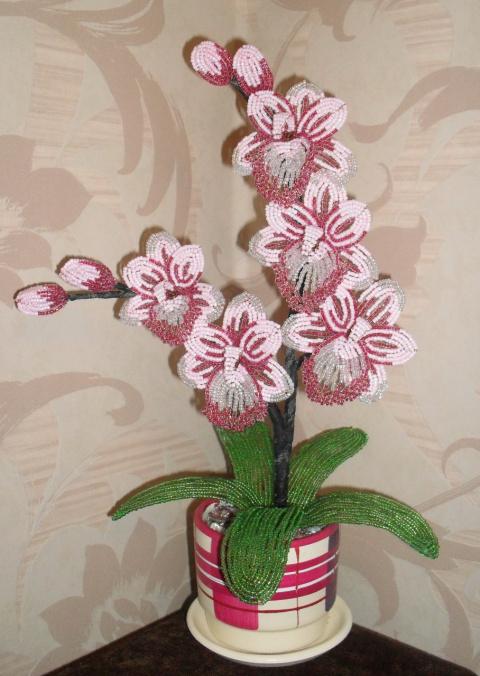 орхидея | БИСЕРНЫЕ РОЗЫ.