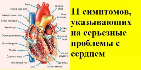 11 симптомов, указывающих на…