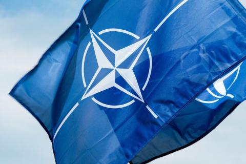 На службе НАТО: раскрыта аме…