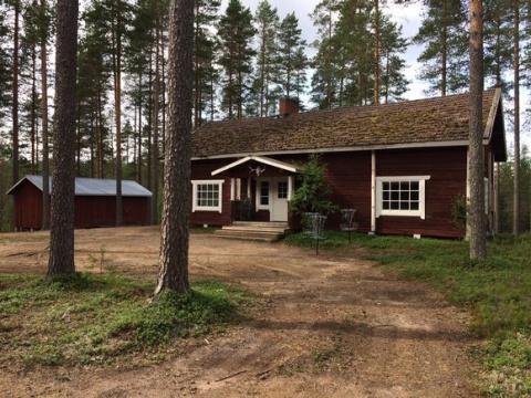В Финляндии  пропали 40 сборщиков ягод с Украины и Эстонии пропали