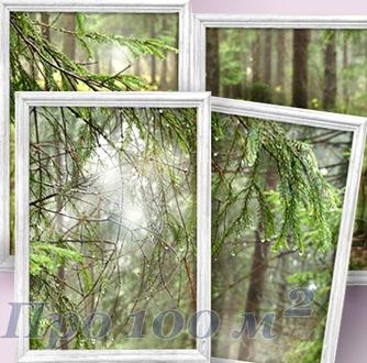 Дверь, ведущая в лес ...(Идеи для ремонта)