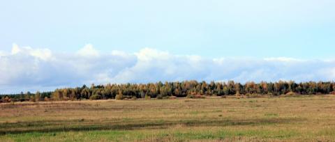 Осенние леса и поля