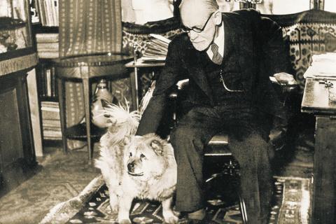Собака Жо-Фи помогала Зигмунду Фрейду проводить сеансы с пациентами.