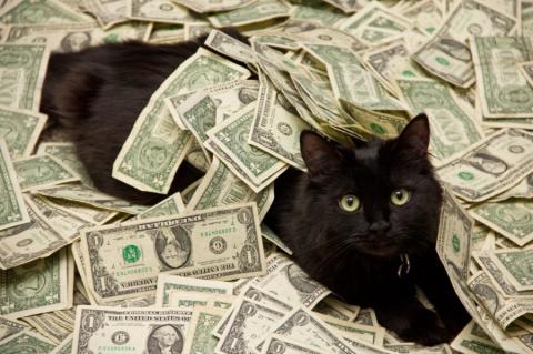 Как привлечь денежный поток в свою жизнь