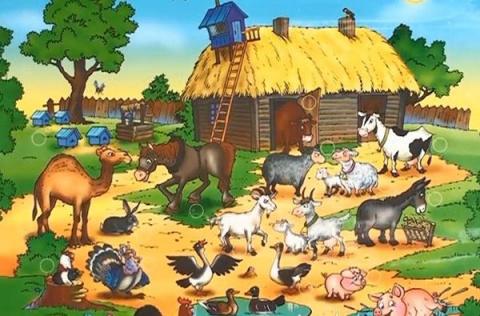 Детям о животных. Животный мир нашей планеты (1)