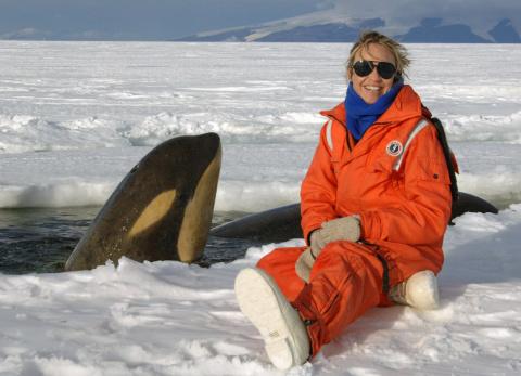 Антарктический туризм: ответ…