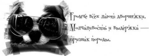 Правда жизни - и смех, и грех!