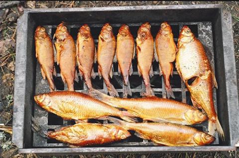 Холодное копчение рыбы — советы и рекомендации