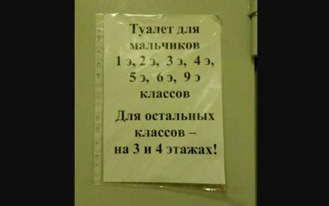 «Элитный» школьный туалет дл…