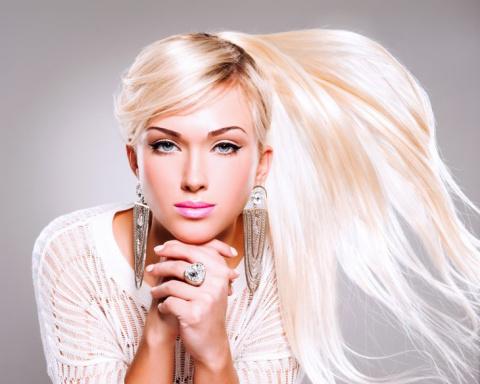 История про зоомагазин, блондинку и привередливого пуделя