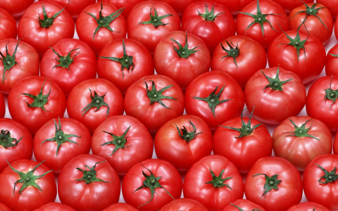 "Биологи назвали помидоры ""уб…"