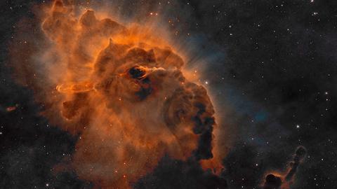 NASA сфотографировали «предв…
