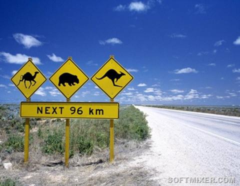 Австралийская жизнь
