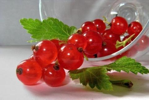 Если ягоды измельчали